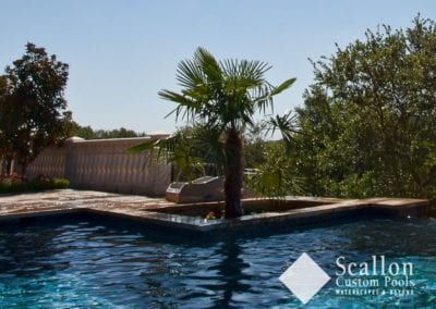 Landscaping-by-Scallon-Custom-Pools